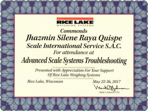 certificado-advanced-scale-system-ricelake-min
